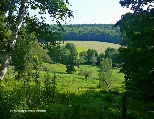 Green Pastures><
