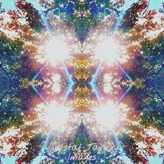 Forest Light Code Art